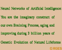 FED: Artificial-Intelligence-Neural-Nets-BP-RGES
